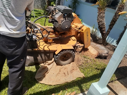 Picture of our stump grinder being used to remove a stump for a customer in Wichita, KS